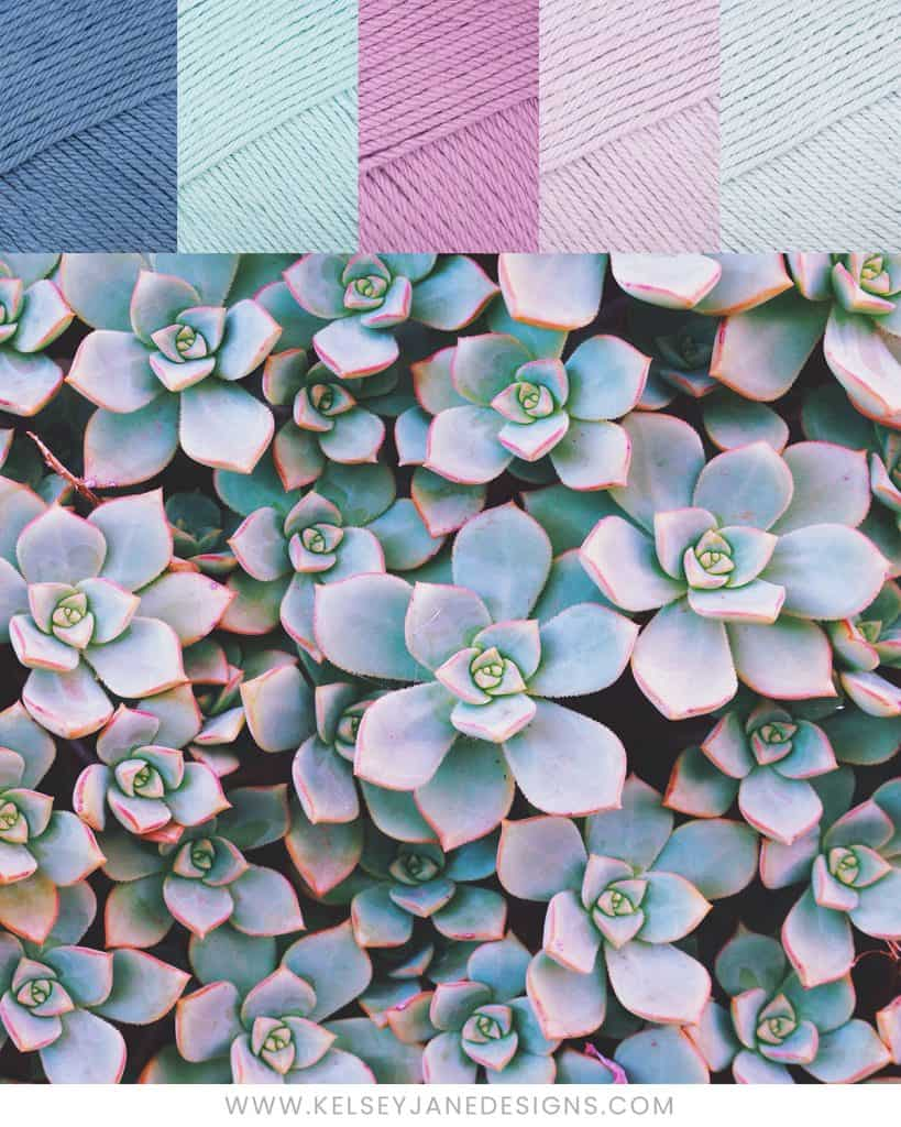 Let the beautiful hues of Echeveria succulents inspire the color scheme of your next knit or crochet project with Paintbox Cotton DK yarns (Dolphin Blue, Washed Teal, Tea Rose, Dusty Rose and Duck Egg Blue).