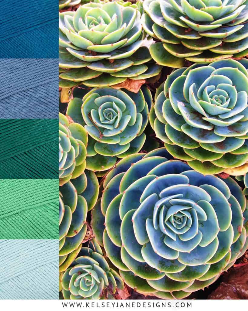Let the beautiful hues of succulents inspire the color scheme of your next knit or crochet project with Paintbox Cotton DK yarns (Kingfisher Blue, Dolphin Blue, Slate Green, Spearmint Green and Washed Teal).